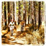 wycieczka rowerowa na dobrych częściach rowerowych
